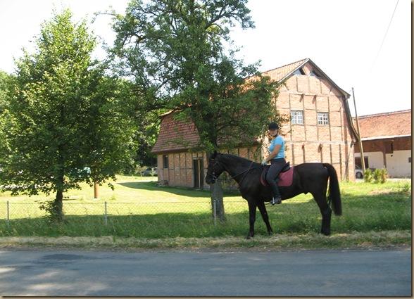 Sommer 2010 241