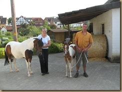 Fohlenschau Umira und Piro (Petras Pferdesuche) 2012 007