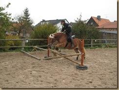 HerbstWinter 2011 006