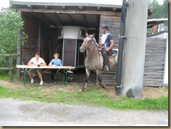 Pferdesuche u.Paddockbau 192