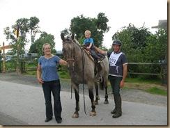 Pferdesuche u.Paddockbau 194